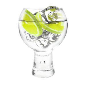 Gin Gläser Ginsanity