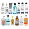 Gin Mini Tasting Set 13x