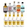 Gin Tonic Mini Tasting 5x5