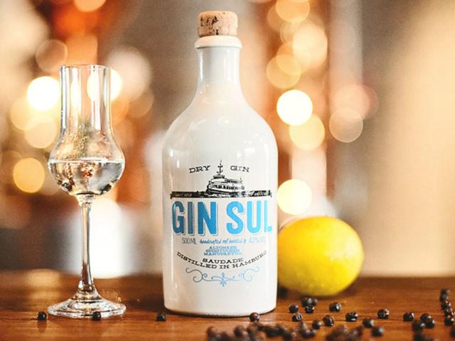 Blog Gin Sul
